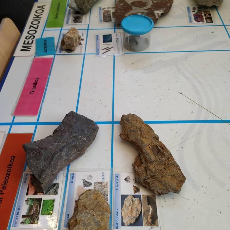 Taller de fósiles con l@s alumn@s de Orio